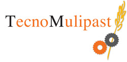 Tecnomulipast_logo